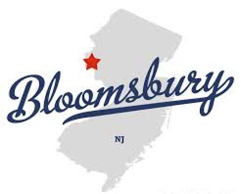 Bloomsbury nj plumber